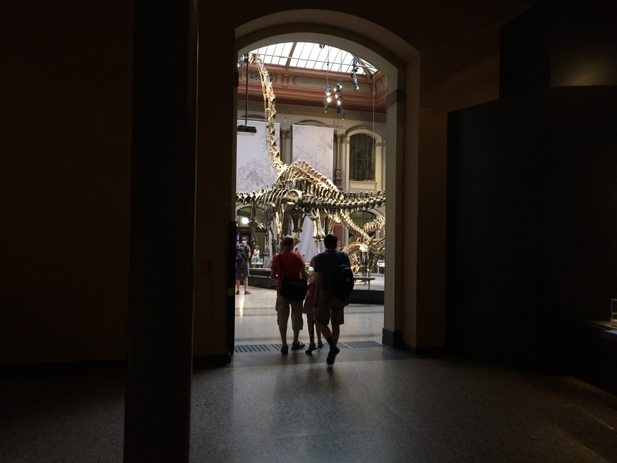 6th day: Natural History Museum