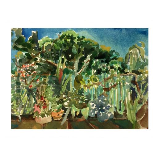 Jardim do ateliê com sibipiruna da rua – aquarela
